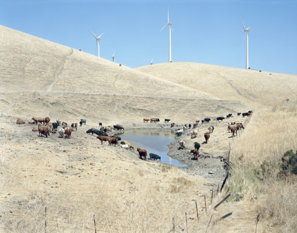 ALTAMONT PASS WIND FARM, CALIFORNIA, from the series AMERICAN POWER, 2005. C-print, 70x92 inches. Courtesy of Sikkema Jenkins & Co., New York.