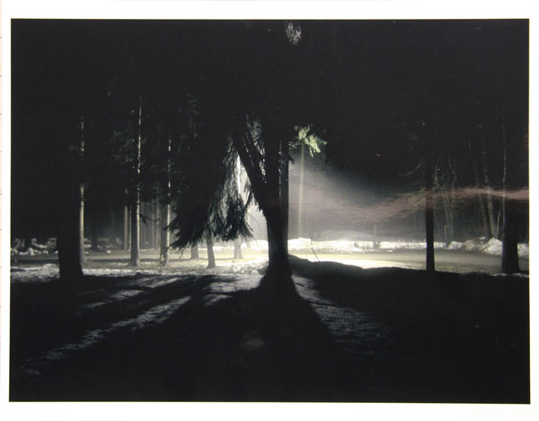 Steve Giovinco; TREE TWILIGHT; Digital c-print; 11 x 14 inches. Courtesy of the artist and Pierogi Flat Files.
